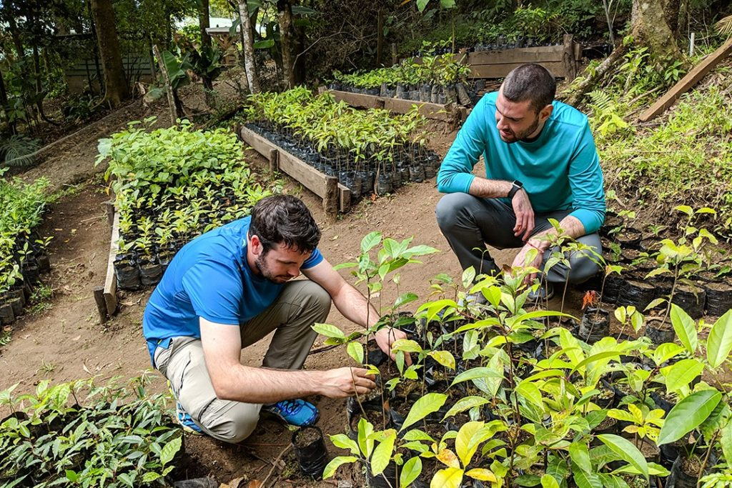Planting trees at Monteverde Institute on our National Geographic Expedition to Costa Rica