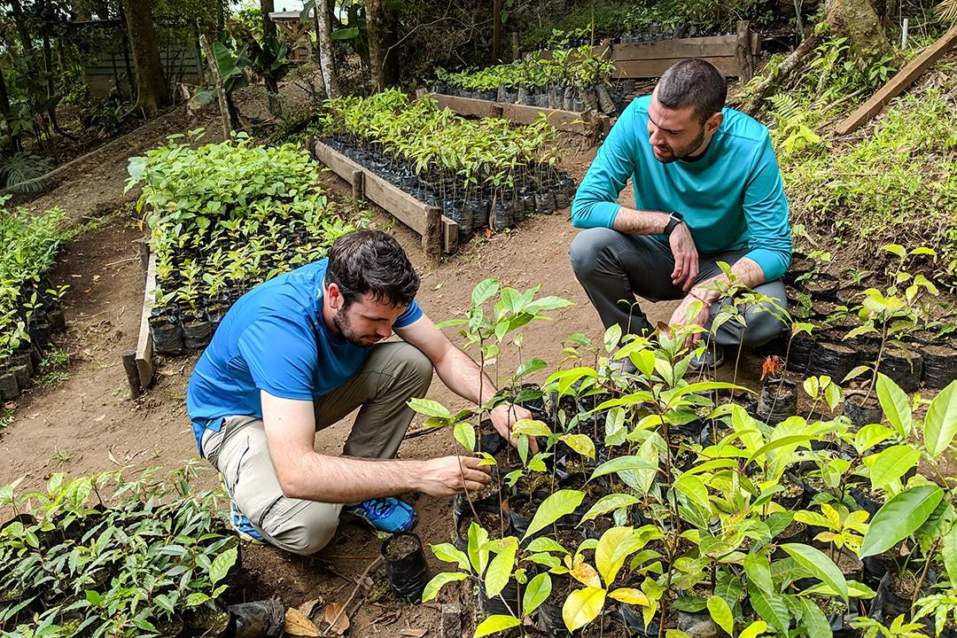 Monteverde institute planting trees 9
