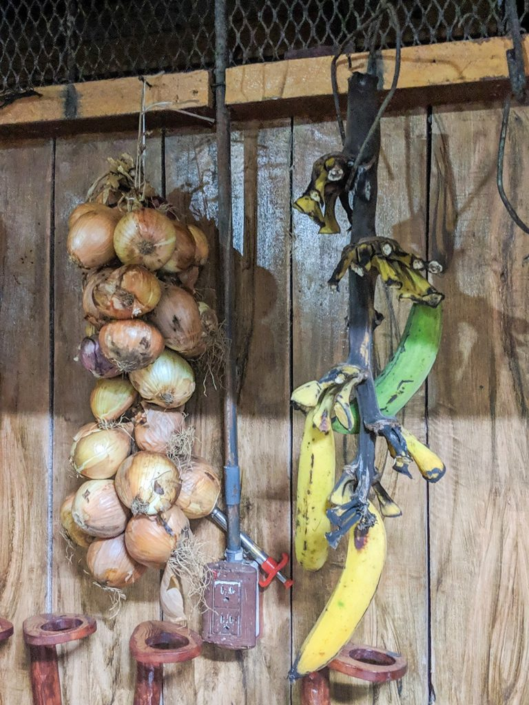 Onions hanging our National Geographic Expedition to Costa Rica