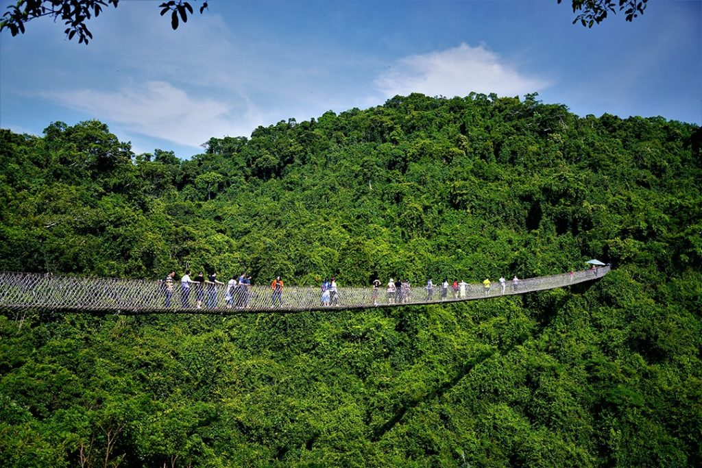 largest rainforests in the world china