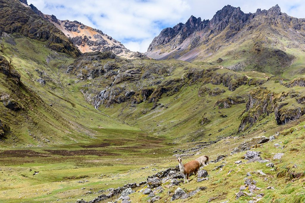 alternative treks to Machu Picchu Lares 1