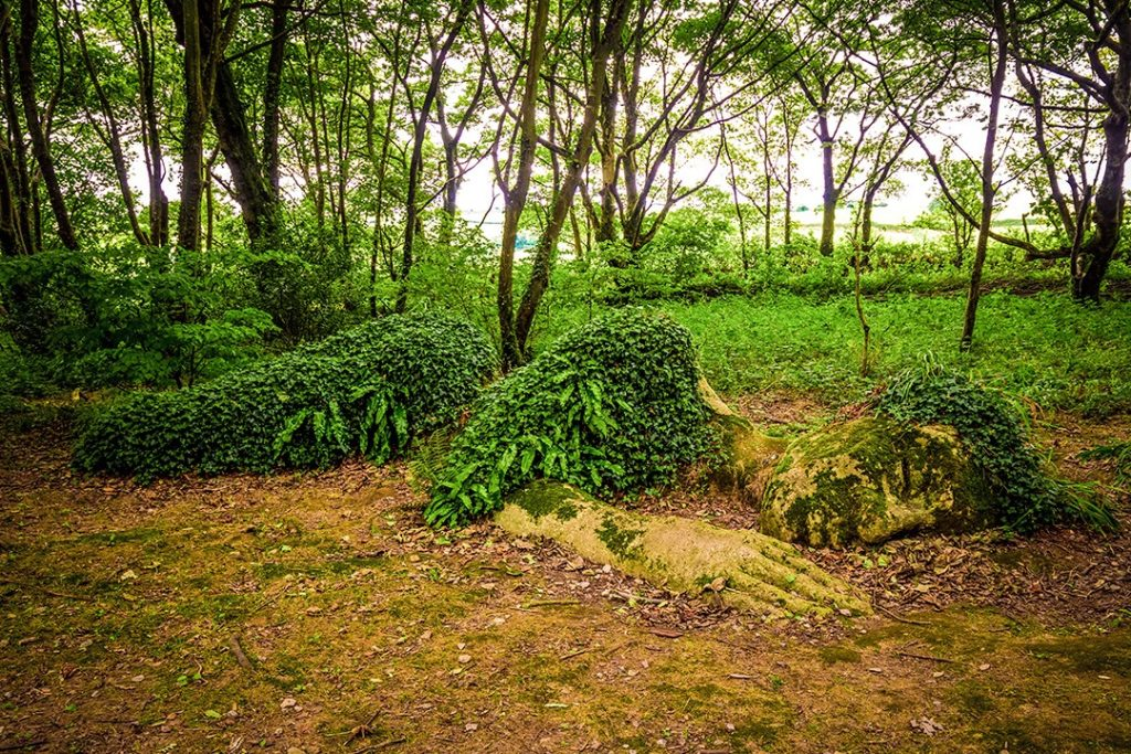 Heligan is one of the most unusual sights in Cornwall