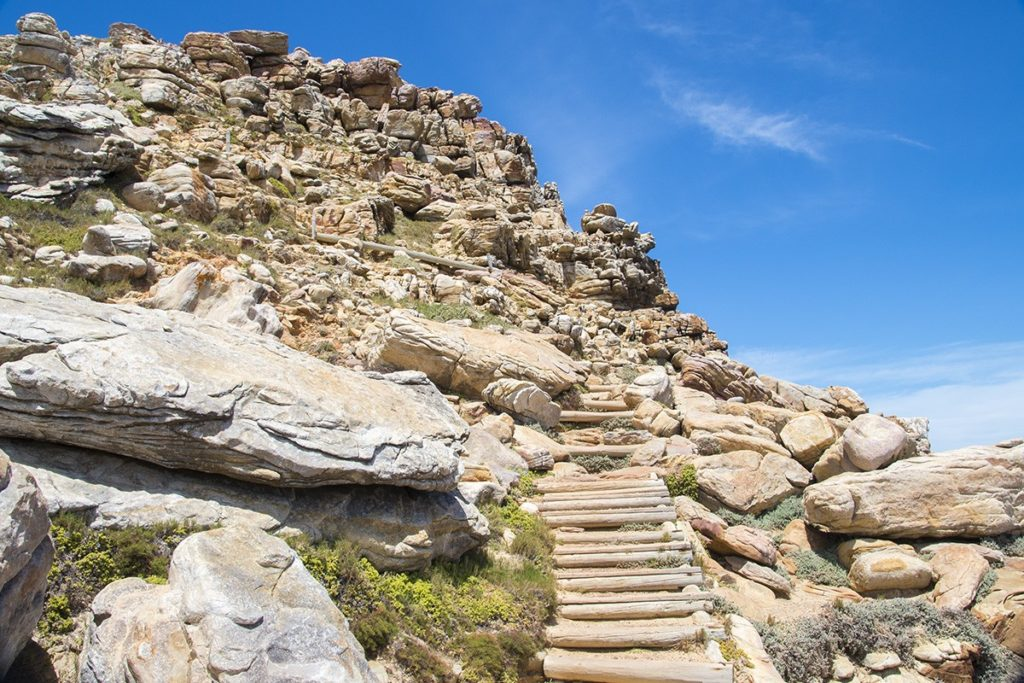 A trail near Cape Point