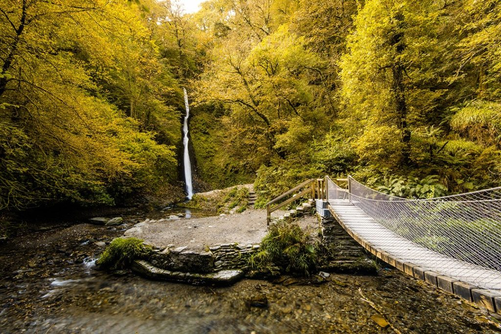 Lydford Gorge is one of the best hikes in Dartmoor National Park