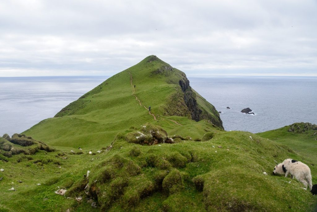 a headland in mykines, faroe islands