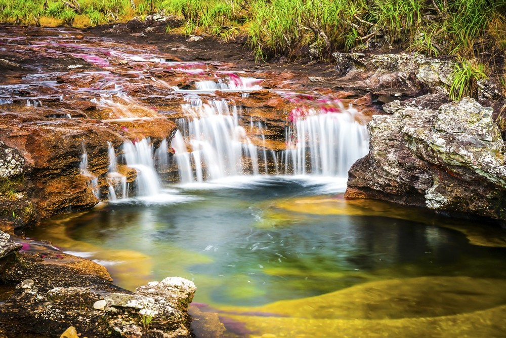 Caño Cristales is known as 'The River of Five Colours'