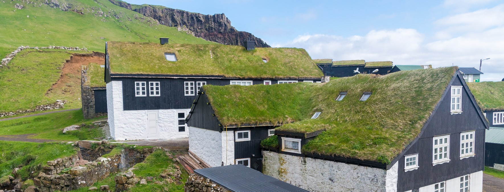 interesting facts about the Faroe Islands lead image