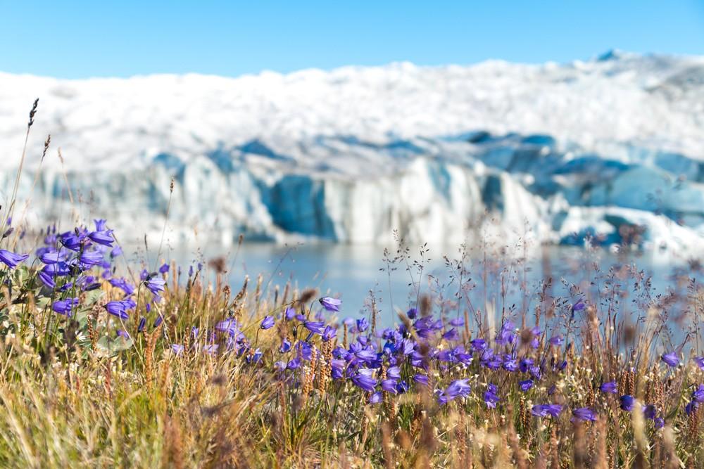 Посещение  Гренландии и ледника Рассела Посещение  Гренландии и ледника Рассела glacier 1