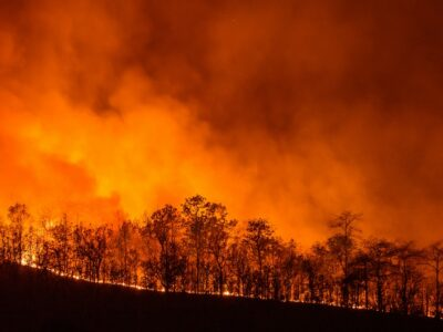 How to escape a wildfire: a hiker's guide