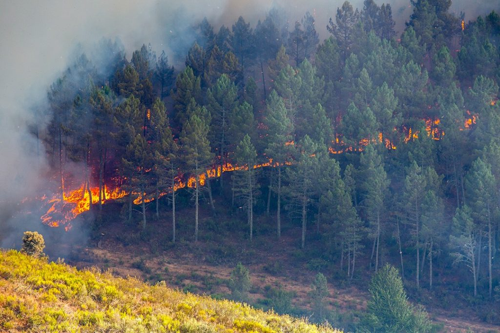 Fires spread faster uphill: how to escape a wildfire