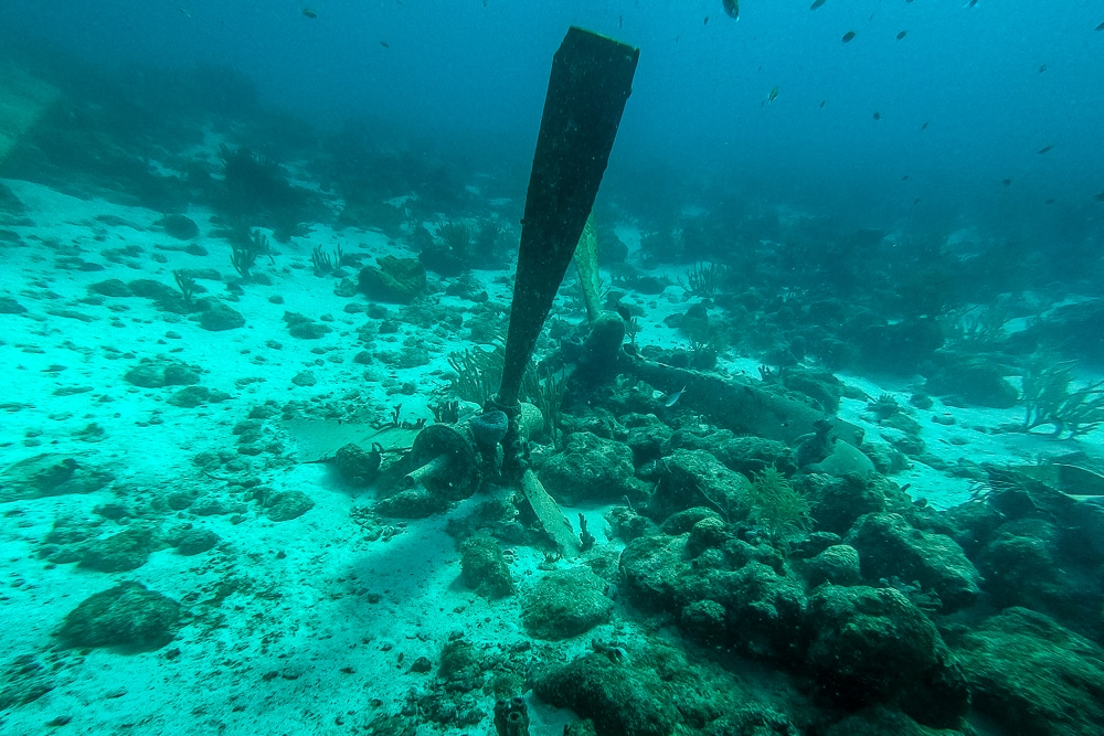 a propeller seen while diving the Sonesta plane wrecks in Aruba