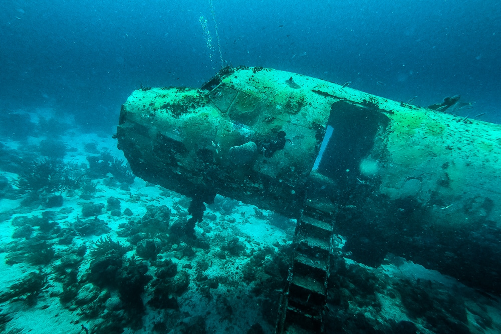 Diving the Sonesta plane wrecks in Aruba
