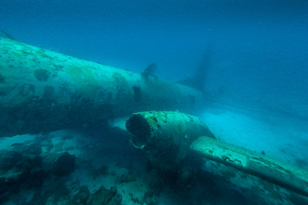 The rear of the fuselage seen while diving the Sonesta plane wrecks in Aruba