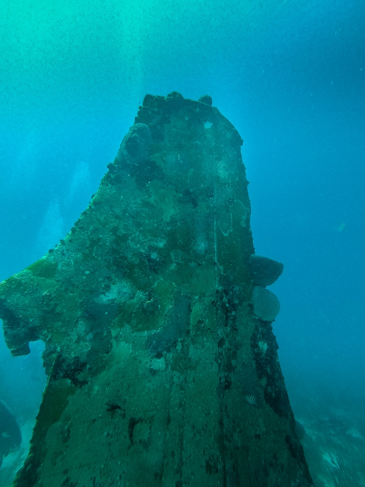 the tail fin first seen while diving the Sonesta plane wrecks in Aruba