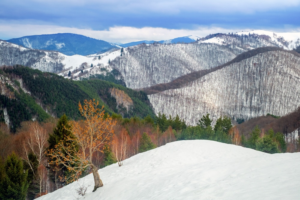 Hike through the extraordinary landscape of the Southern Carpathians