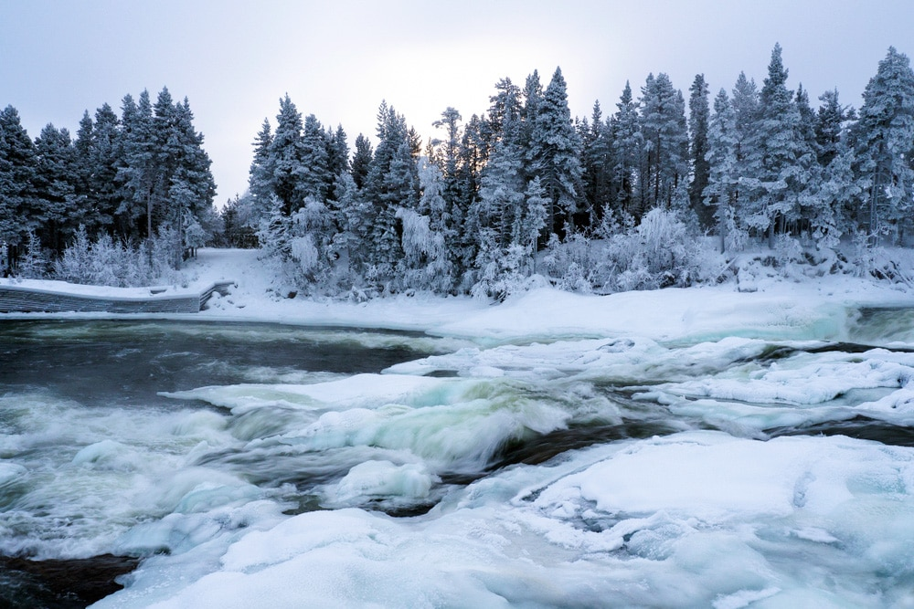 Storforsen is one of Europe's best hikes
