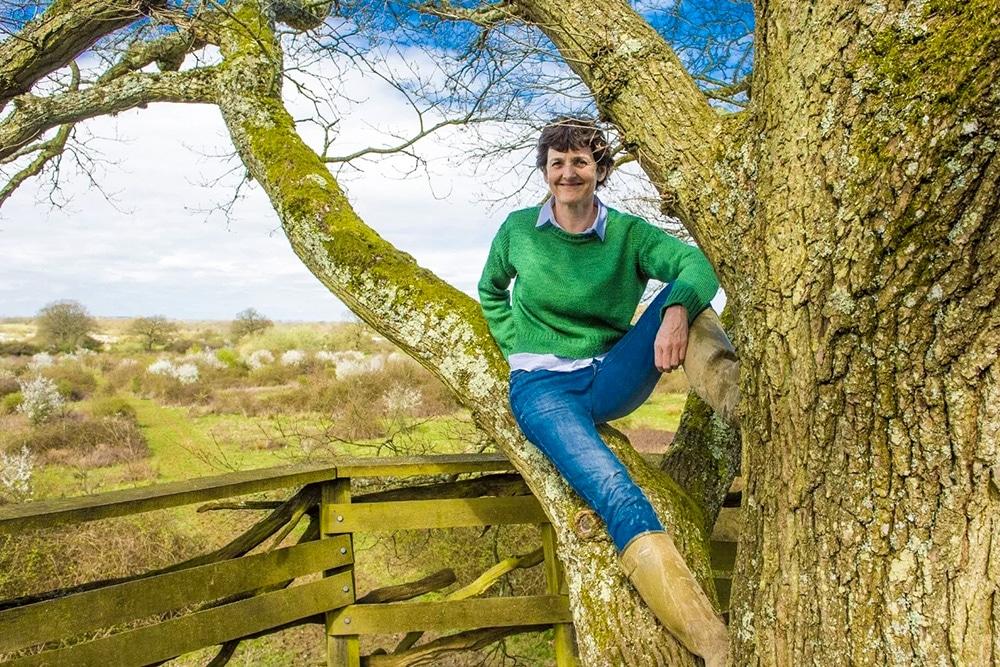 Tree a montré comment les efforts de reconstruction peuvent restaurer la terre dans un laps de temps extrêmement court.
