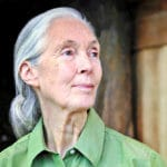 Jane Goodall is one of the most famous environmentalists of our time.