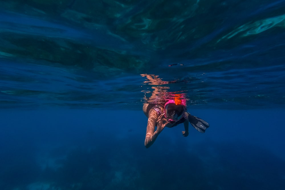 Чем заняться в Бонайре Чем заняться в Бонайре Bonaire snorkelling 12