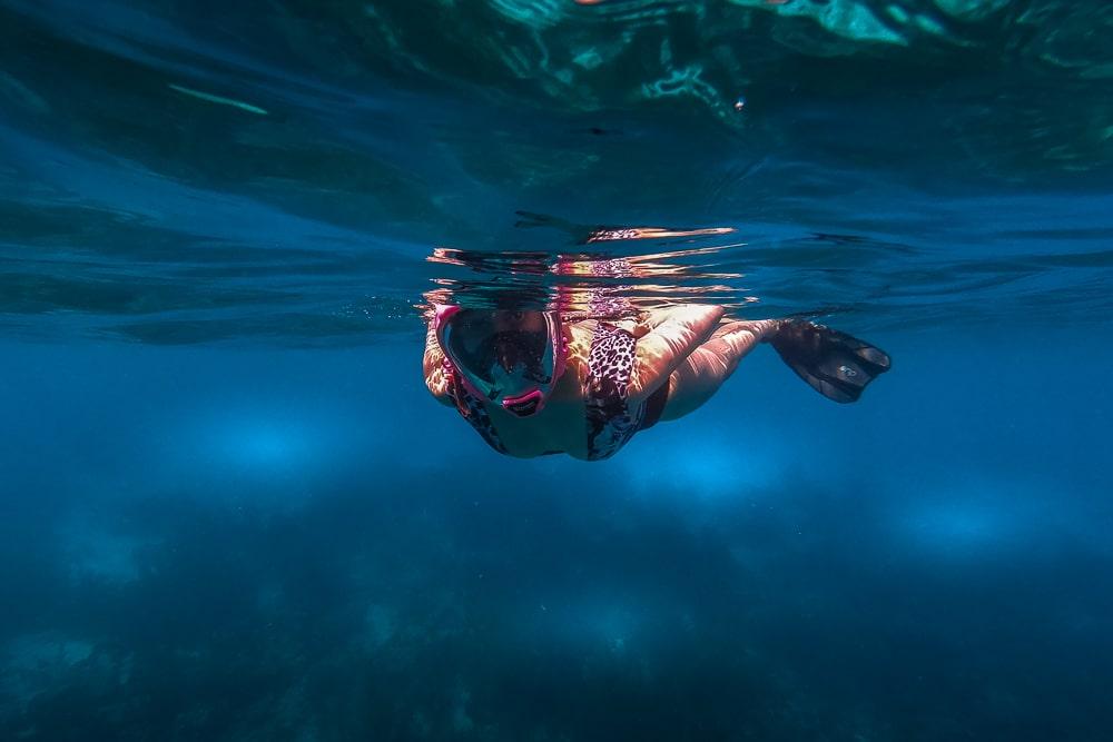 Чем заняться в Бонайре Чем заняться в Бонайре Bonaire snorkelling 3