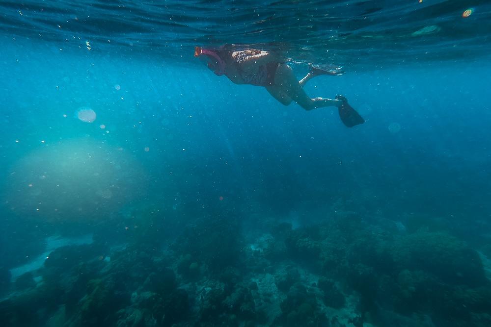Чем заняться в Бонайре Чем заняться в Бонайре Bonaire snorkelling 4