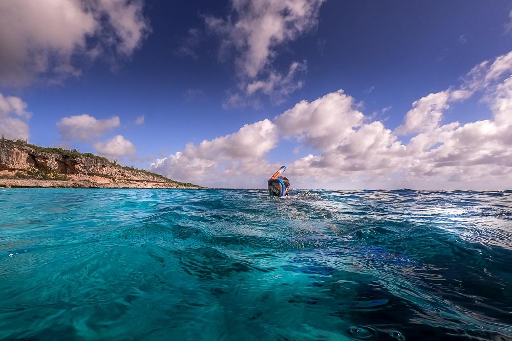 Чем заняться в Бонайре Чем заняться в Бонайре Bonaire snorkelling 5