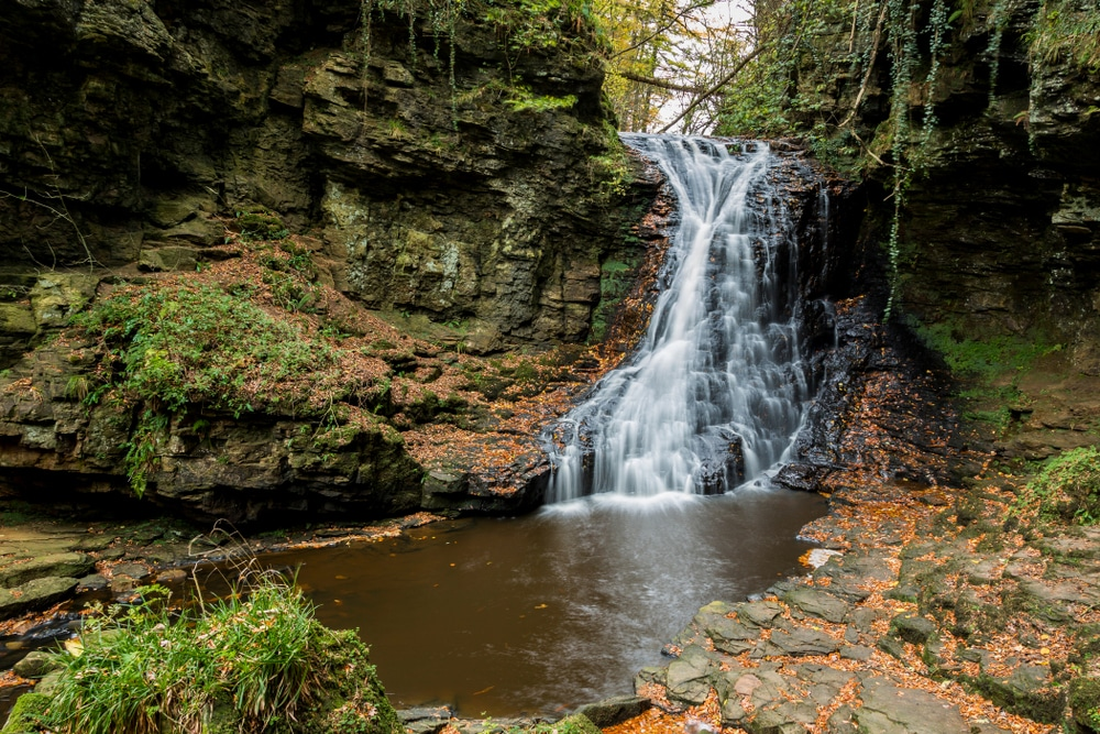 Hareshaw Linn is one of best hikes in Northumberland National Park