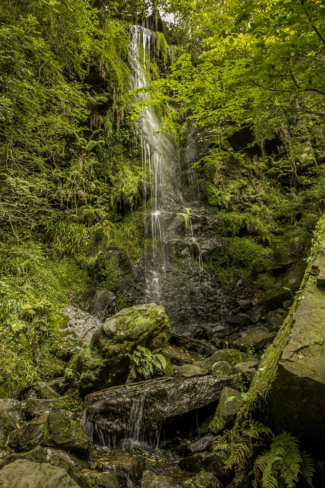 Mallyan Spout is one of the Best hikes in the North York Moors National Park