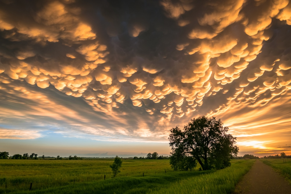 13 потрясающих природных явлений 13 потрясающих природных явлений stunning natural phenomena mammatus clouds