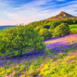 Roseberry Topping is one of the best hikes in the North York Moors National Park