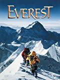 Everest 1998 poster