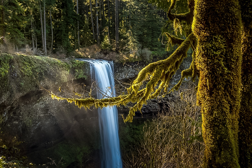Silver Falls in the Willamette Valley of Oregon