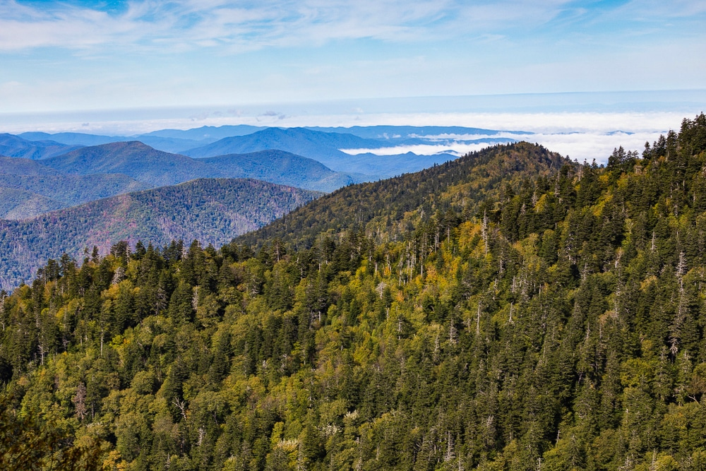 The Great Smoky Mountains National Park in Tennessee  is one of the best hiking trails in every US state