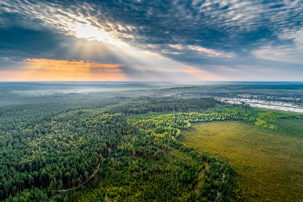 An aerial view of Latvian countryside