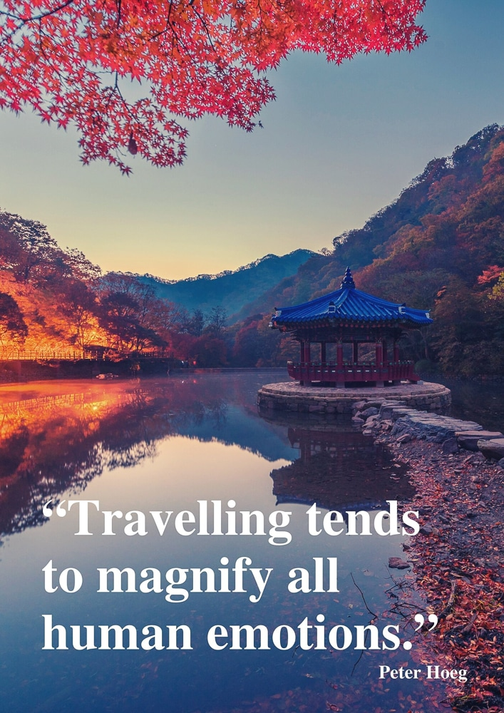 """Travelling tends to magnify all human emotions."""