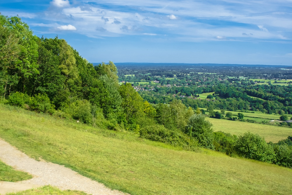 Box Hill is one of the most popular hiking trails in England