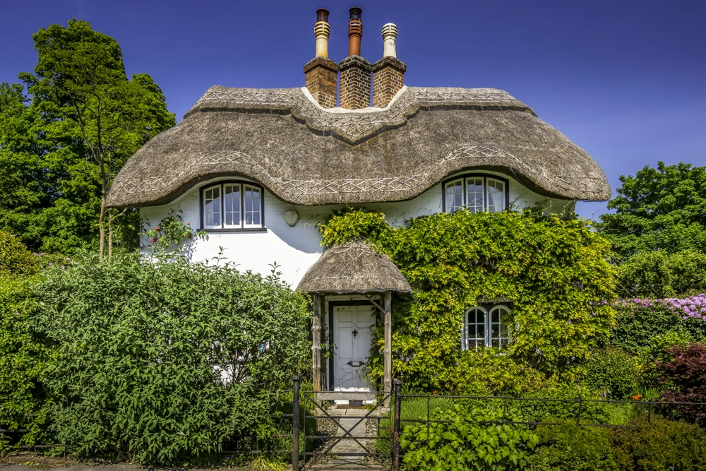 Thatched cottage near Lyndhurst