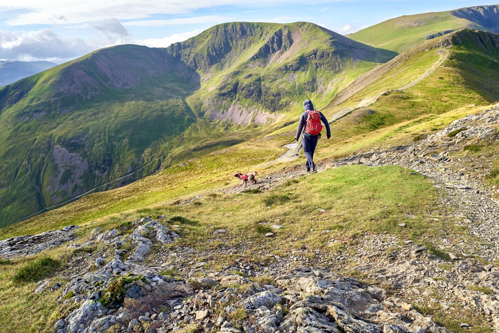 A hiker descends from the summit of Grisedale Pike